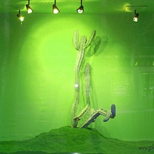 RUNNING: COYOTES & POLLEROS. INSTALACI�N EN ROOM ART FAIR. MADRID 2011